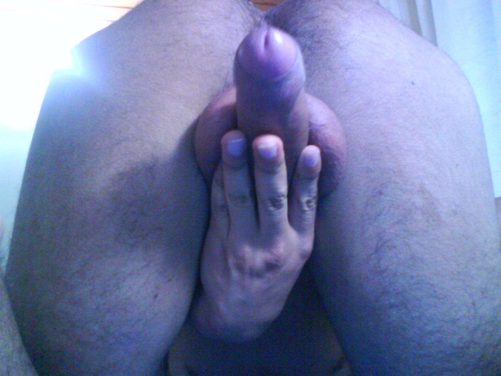 fley69