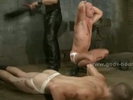 Sexy gay guys forced..